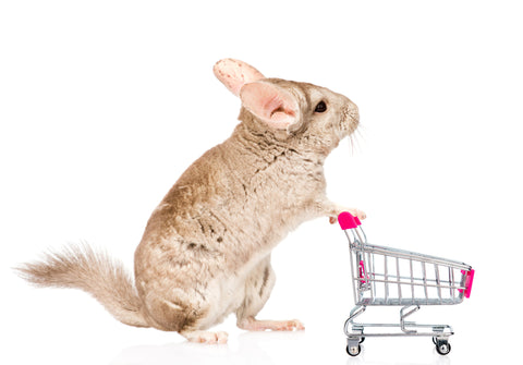 Chinchilla Costs and how to account for them