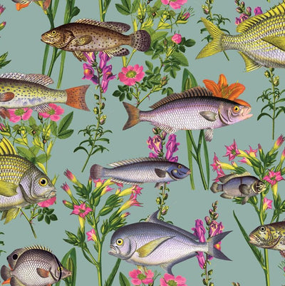 coastal fish wallpaper for walls, seaside fish wallpaper for sale
