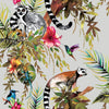 tropical animal wallpaper for walls,colorful lemur wallpaper for walls