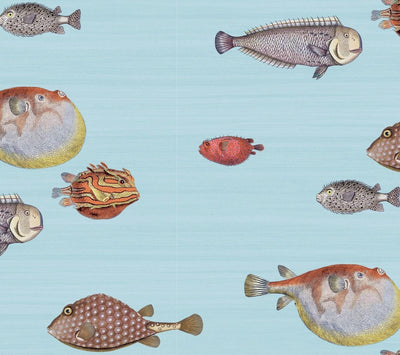 cole and son acquario blue wallpaper for sale, cole and son fish wallpaper for sale blue