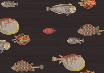 cole and son black acquario wallpaper for sale, cole and son fish wallpaper in black for sale