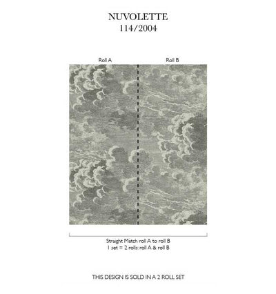 Nuvolette Mural Black/White - Cole & Son
