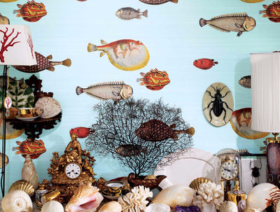 Cole and Son Acquario Wallpaper pale blue, Cole and Son whimsical wallpaper