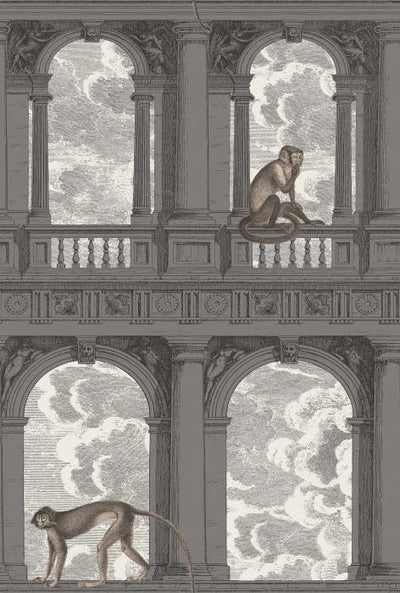 Two monkeys wallpaper cole and son, Procuratie Con Soot & Snow  Cole and Son