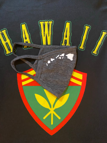 Hawaii Island Gray Filter pocket Masks