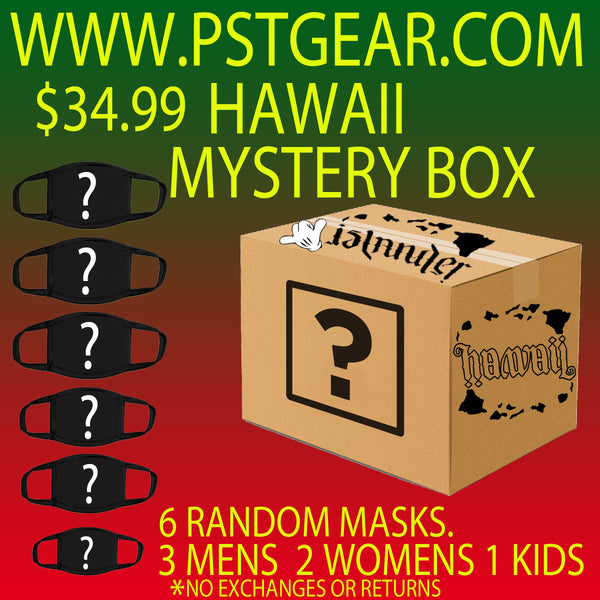 Mystery Box Hawaii Protective masks