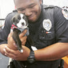 This Cop Responded To A Normal Call And Found An Adorable Buddy In The Process