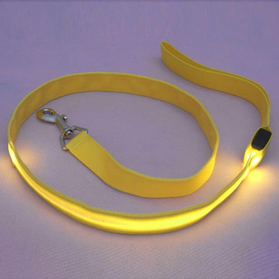DoggyMarket Yellow LED Dog Leash