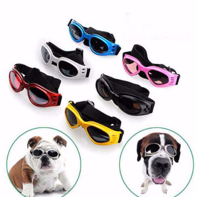 DoggyMarket Dog Sun Glasses