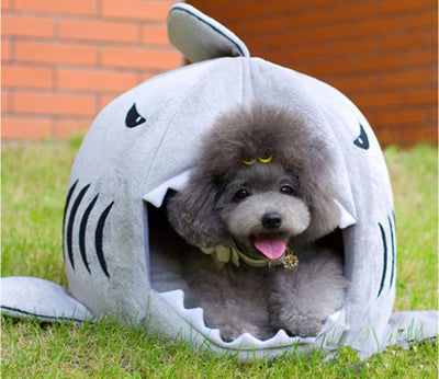 DoggyMarket Shark Dog Bed