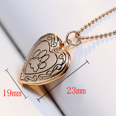 Silver/Gold Plated Dog Paw Heart Necklace