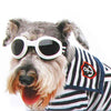 DoggyMarket White Dog Sun Glasses
