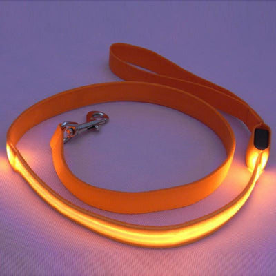 DoggyMarket Orange LED Dog Leash