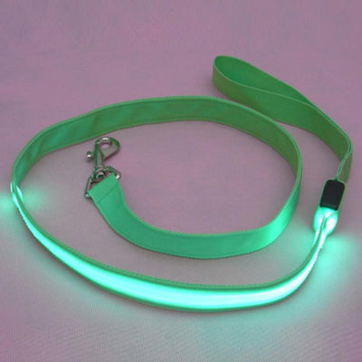 DoggyMarket Green LED Dog Leash