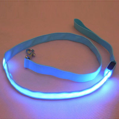 DoggyMarket Blue LED Dog Leash
