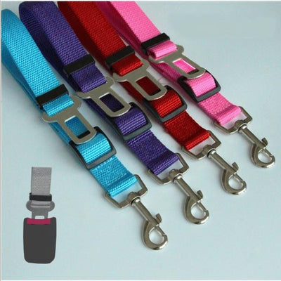 Colorful Dog Seat Belt