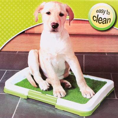 DoggyMarket Potty Pad Training Mat With Synthetic Grass