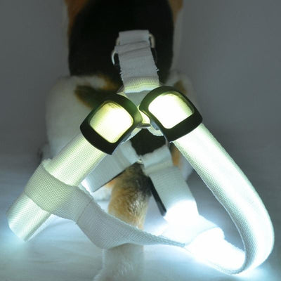 DoggyMarket White LED Dog Harness