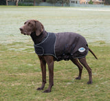 Weatherbeeta Comfitec Ultra Cozi Dog Coat Medium/Lite
