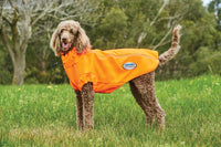 Comfiec Active Dog Coat Orange