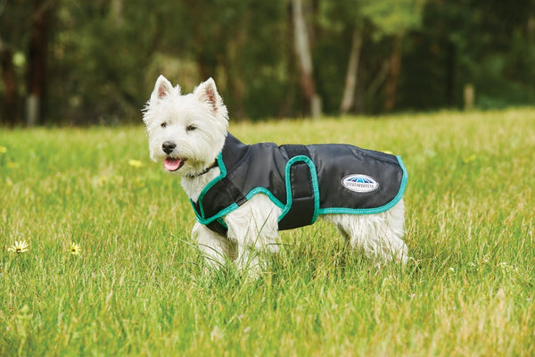 Comfitec Windbreaker Dog Coat Black
