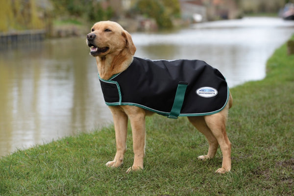 Green-Tec Dog Lite Plus