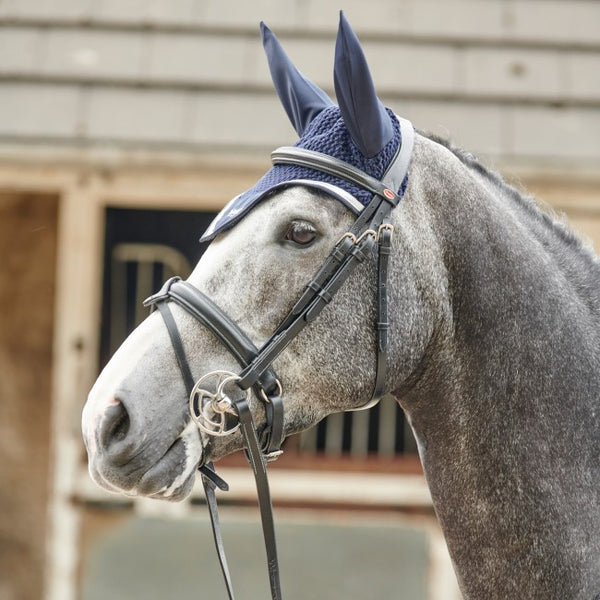 John Whitaker Eastwood Raised Flash Bridle