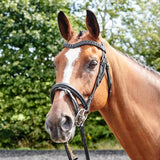 John Whitaker Lynton Flash Bridle