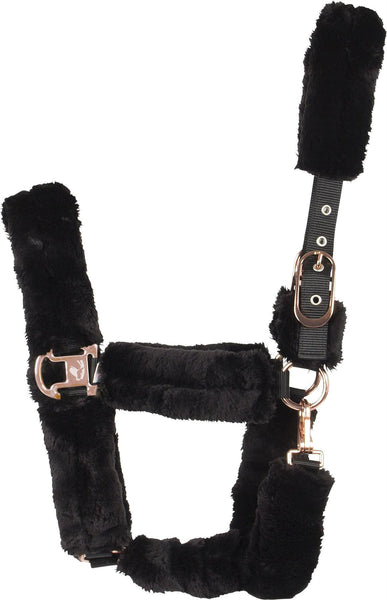 Catago Luxury Headcollar