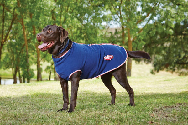 Weatherbeeta Zip Up Dog Fleece