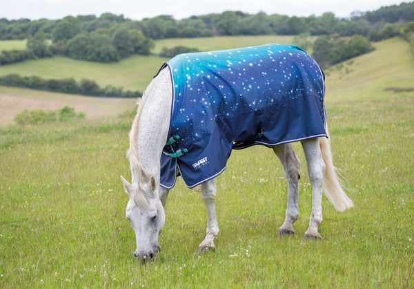 Tempest Original 100 Turnout Rug
