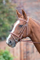 Avignon Padded Raised Flash Bridle