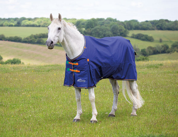Highlander Original 100 Turnout Rug