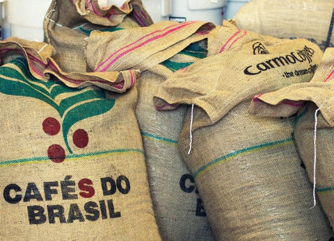 Brazil Green Coffee