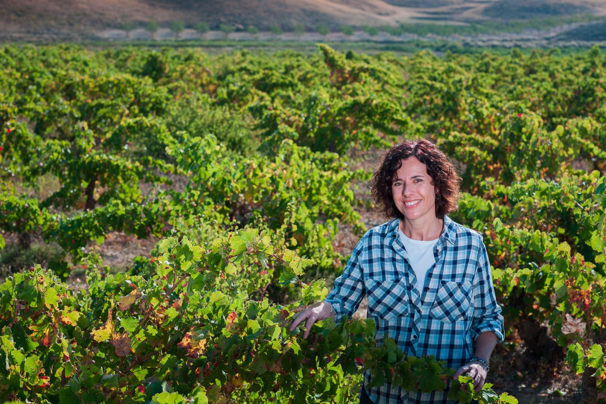 BODEGAS TEMPORE: THE CELEBRATORY UNION OF A WOMAN AND HER WINEMAKING LEGACY