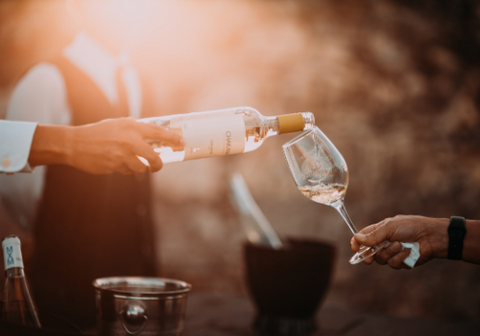 Wine party with vegan-friendly wines
