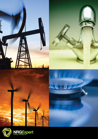 Global Guide to Natural Gas Utilities Report