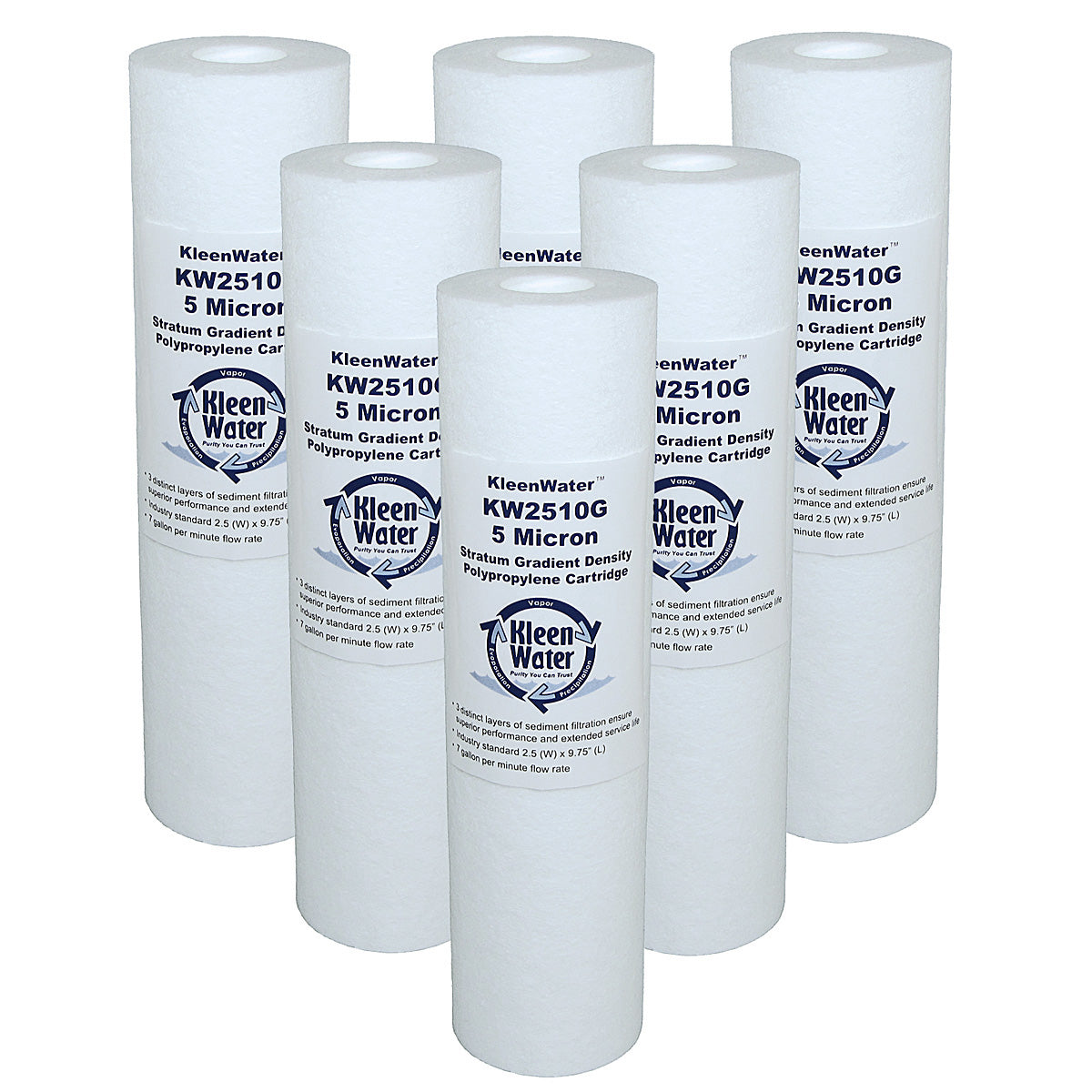 Six Pentek P5 Compatible Water Filters - 2.5 x 9.75 Inch - 5 Micron