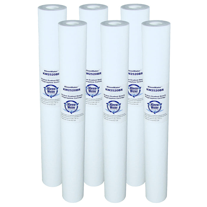 Six AP110-2C Compatible Poly-Spun Water Filters - 2.5 x 20 Inch