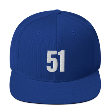51 - Washington D.C. Statehood Snapback Hats - Blue | District of Clothing - DC 51st State T-Shirts & Hats | Black Owned Business