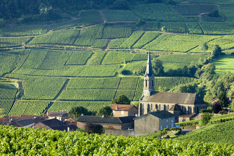 Burgundy: The Good Life at a Slower Pace