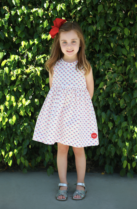 AMERICAN FLAG PINNY