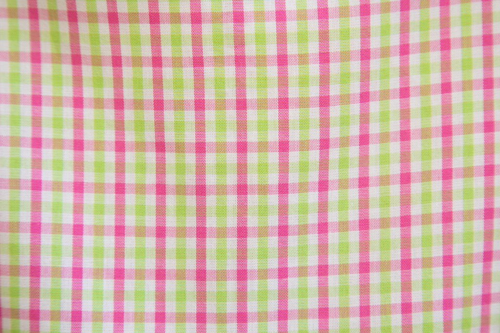SPRING CHECK PINNY