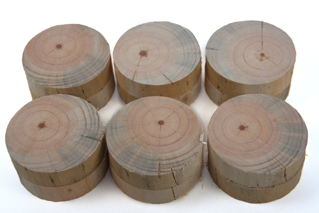Wood round set for hammering x12
