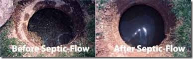 Before and after picture using septic flow shock