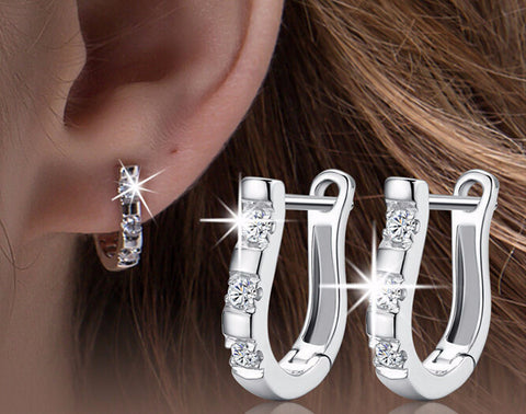 Luxury Horse Shoe Earrings