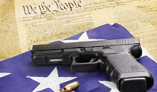 Should We Ban the 2nd Ammendment?