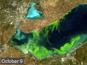 Following Lake Erie's Algae Bloom Season
