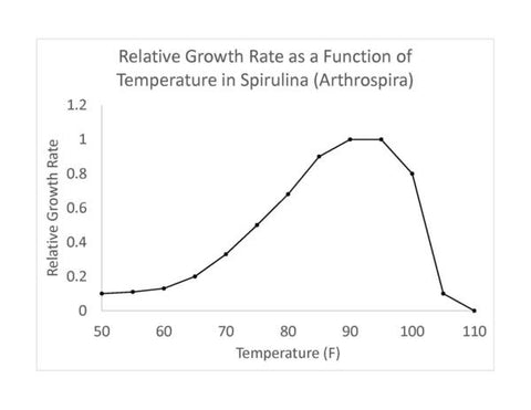 Spirulina culture as a function of temperature