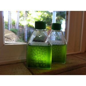 Algae Culture Kit for Microalgae. We have perfected the method and supplies for anyone to grow an ecologically or industrially important strain of algae. It contains everything you need to grow a laboratory-grade culture at home or at your desk!